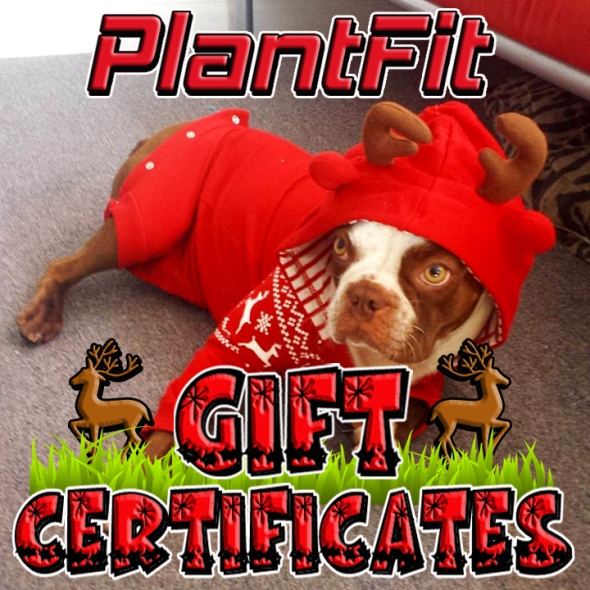 2015 Gift Certificate